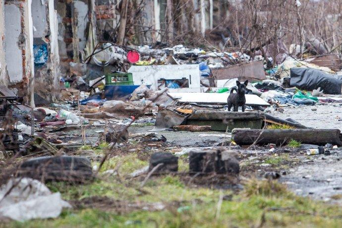Čierna skládka kúsok od centra je stále bratislavský problém. Foto N - Matej Dugovič