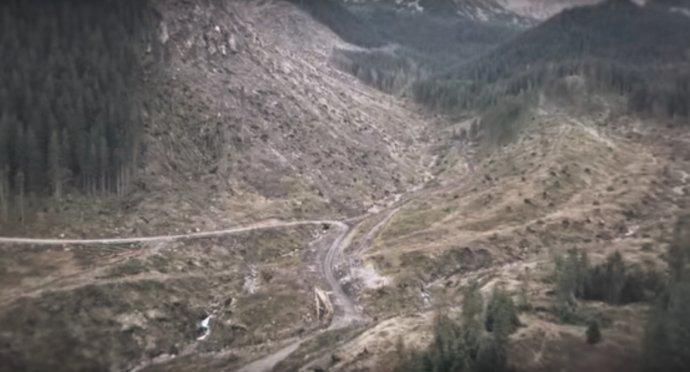 Záber z klipu kampane My sme les – Demänovská dolina.