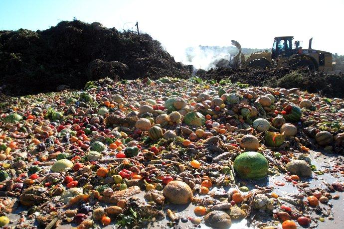 Ľudstvo vyhodí tretinu jedla, čo vyprodukuje. Zdroj - OLIO