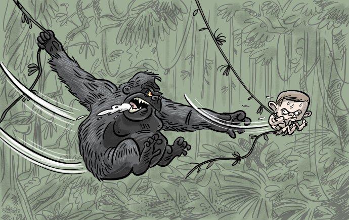Shooty: Neľútostná džungla (2.12.2020)