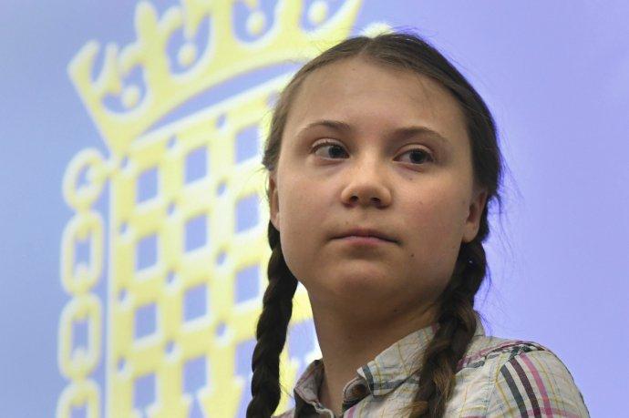 Gretu Thunbergovú k prvému štrajku inšpirovali školáci z amerického Parklandu, ktorí demonštrovali za obmedzenie držby zbraní. Foto - TASR/AP