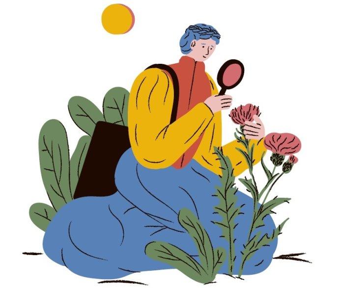 Ilustrácia - Barbora Idesová