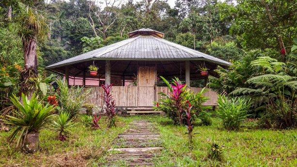 V obklopení amazonského pralesa sme podstúpili liečenie medicínou Ayahuascou.