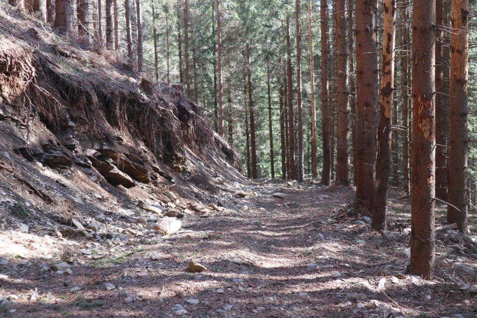 Nelegálnu stavbu cesty zastavila až správa národného parku za asistencie polície. Foto: Soňa Mäkká