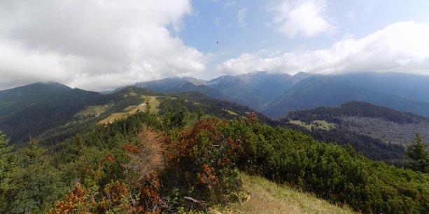 Cestou z Babiek na Sivý vrch. V pozadí vidno končiare Západných Tatier, pod ktorými sa rozprestierajú tri cenné doliny.