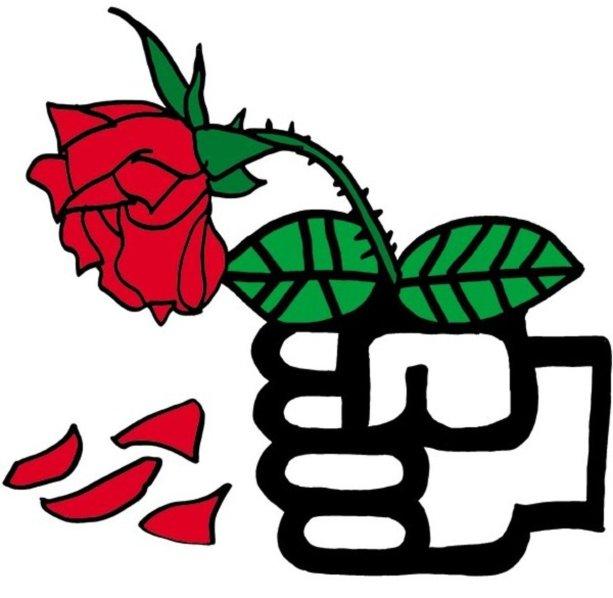 Ruža ako symbol sociálnej demokracie