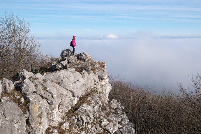 Havrania skala v Malých Karpatoch. Ilustračné foto – Ľubomír Mäkký
