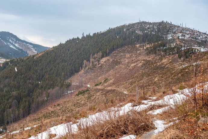 Holina v Nízkych Tatrách. Foto – Ľubomír Mäkký
