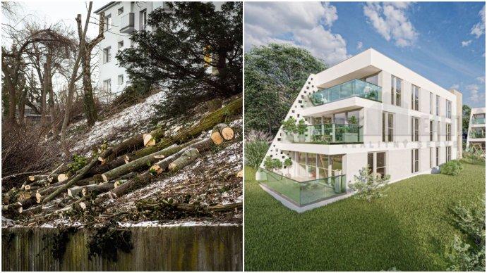 Spílené stromy na Drotárskej ceste v Bratislave a vizualizácia budúcej stavby. Foto – N, vizualizácia z portálu Topreality