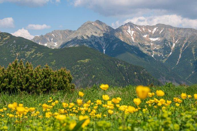Tatranský národný park. Foto – Ľubomír Mäkký.