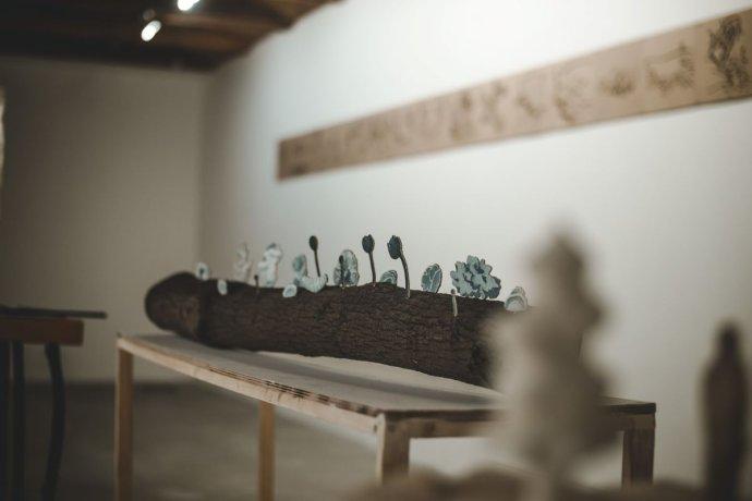 Z výstavy Ľigňin v galérii EQO v Spišskom Hrhove, ktorá potrvá do 21. júla. Foto - Robin Polák